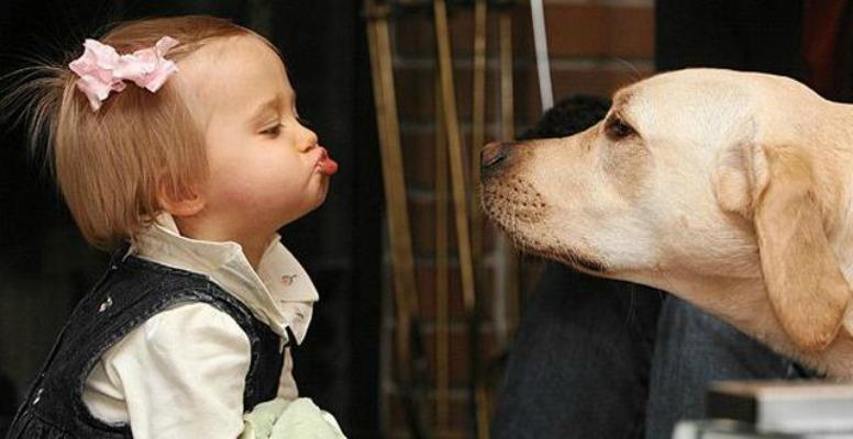 child-dog-6.jpg