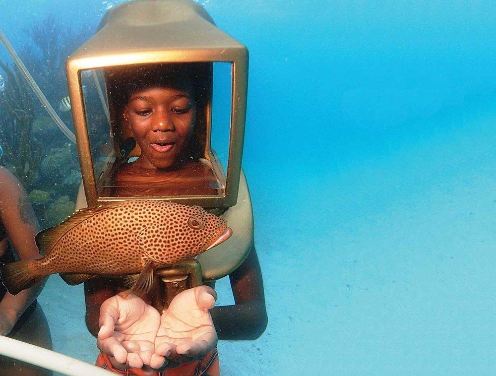 fish_bermuda.jpg