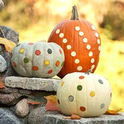 Polka dot pumpkins bhg