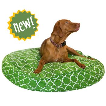 Dogbed molly mutt
