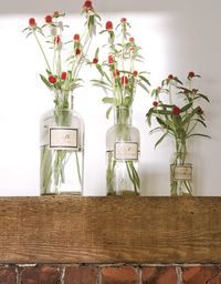 Strawberry-Flowers-Pharmacy-Bottles-HTOURS0207-de