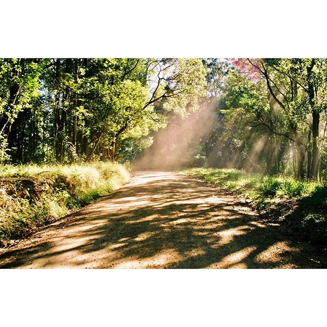 ✨turn around to see what you left behind ✨#neverneverland #bellingen