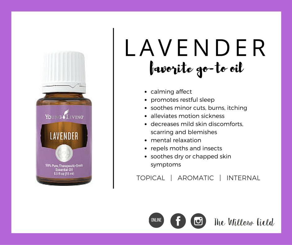 lavender_eo_card (1).png