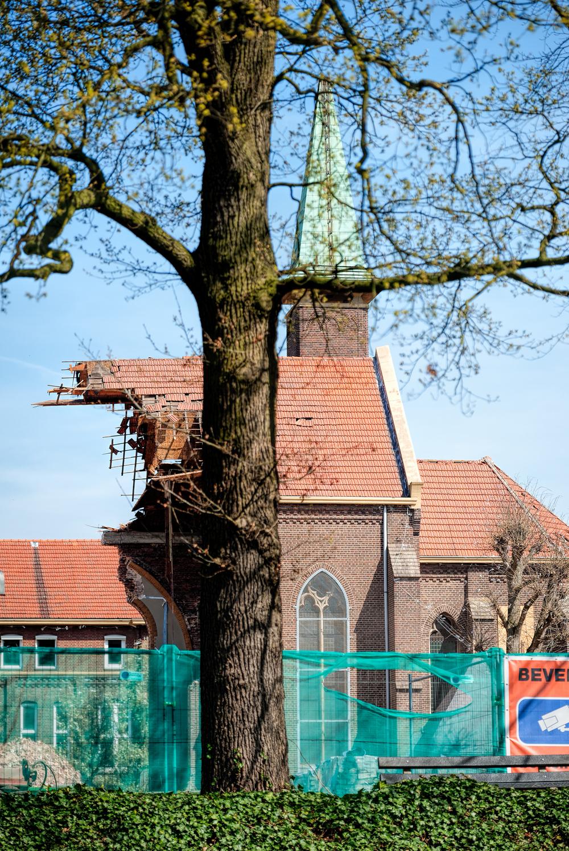 Rector_Driessenstraat-99.jpg