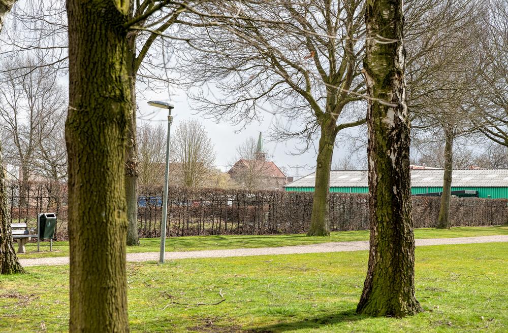 Rector_Driessenstraat-66.jpg