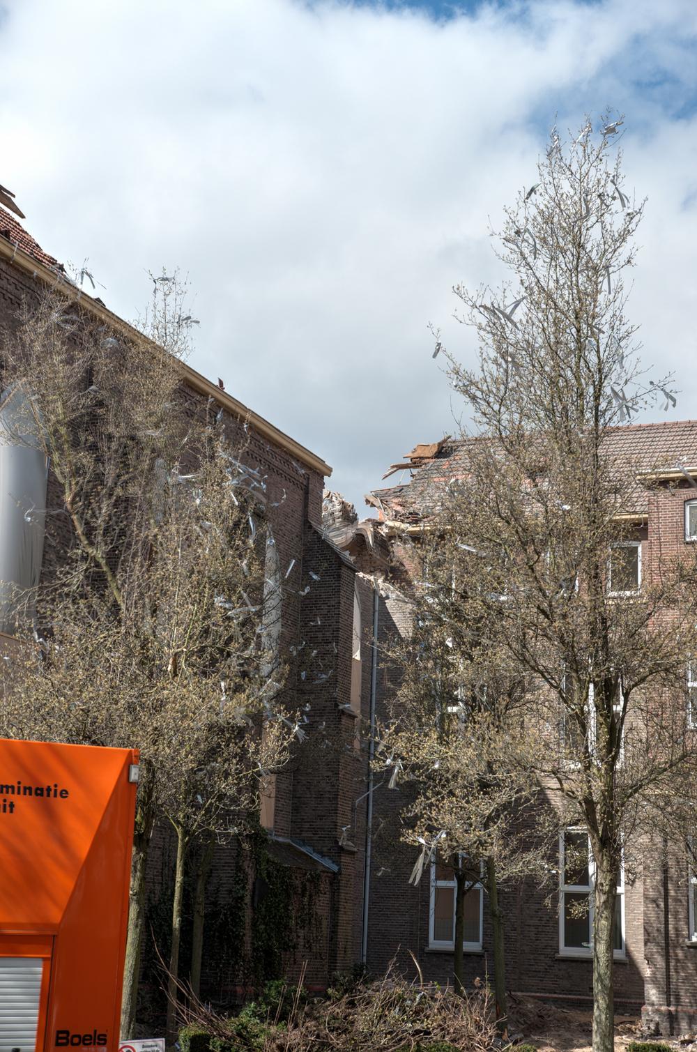 Rector_Driessenstraat-72.jpg