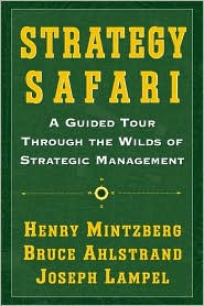 strategy safari book