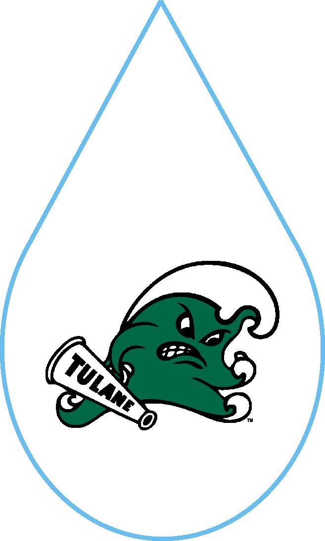 College Logos_Tulane.png