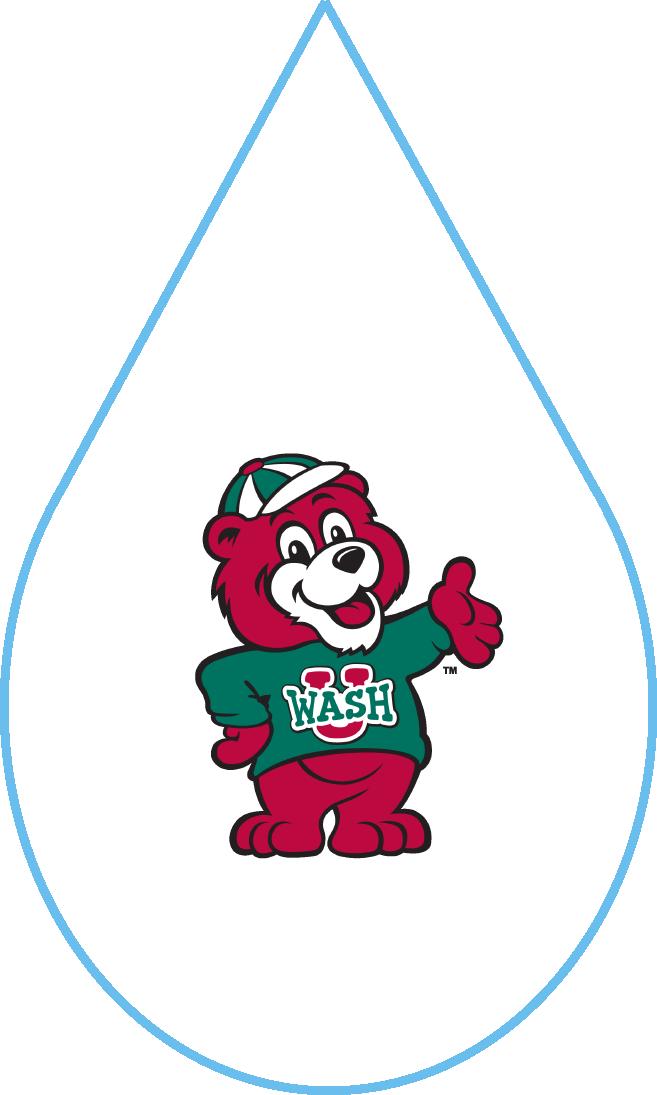College Logos_WashU.png