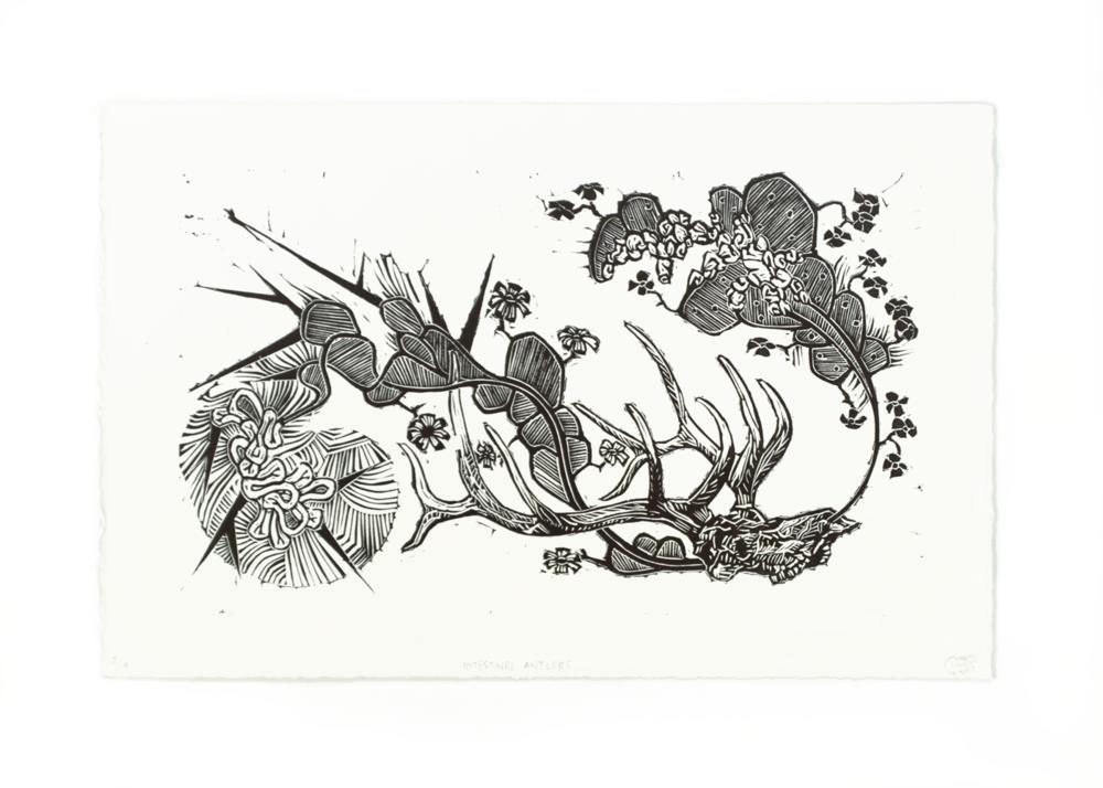 Intestinal Antlers