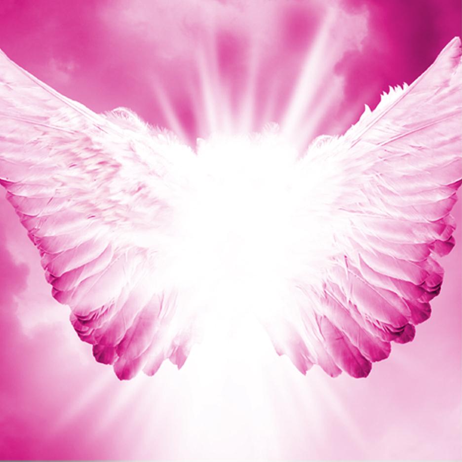 PinkWings.jpg