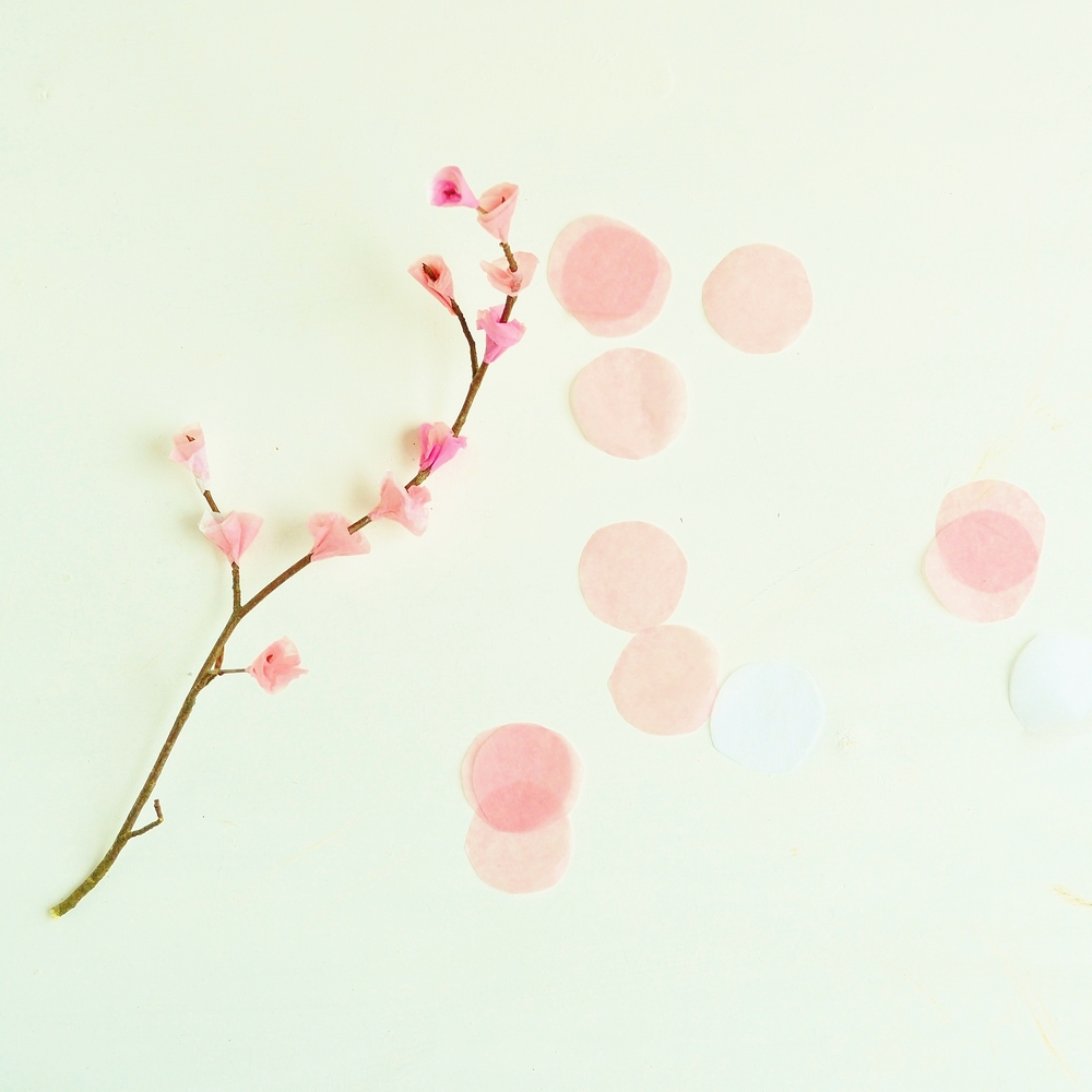 Tissue Paper Cherry Blossoms And Hanami Craftpod