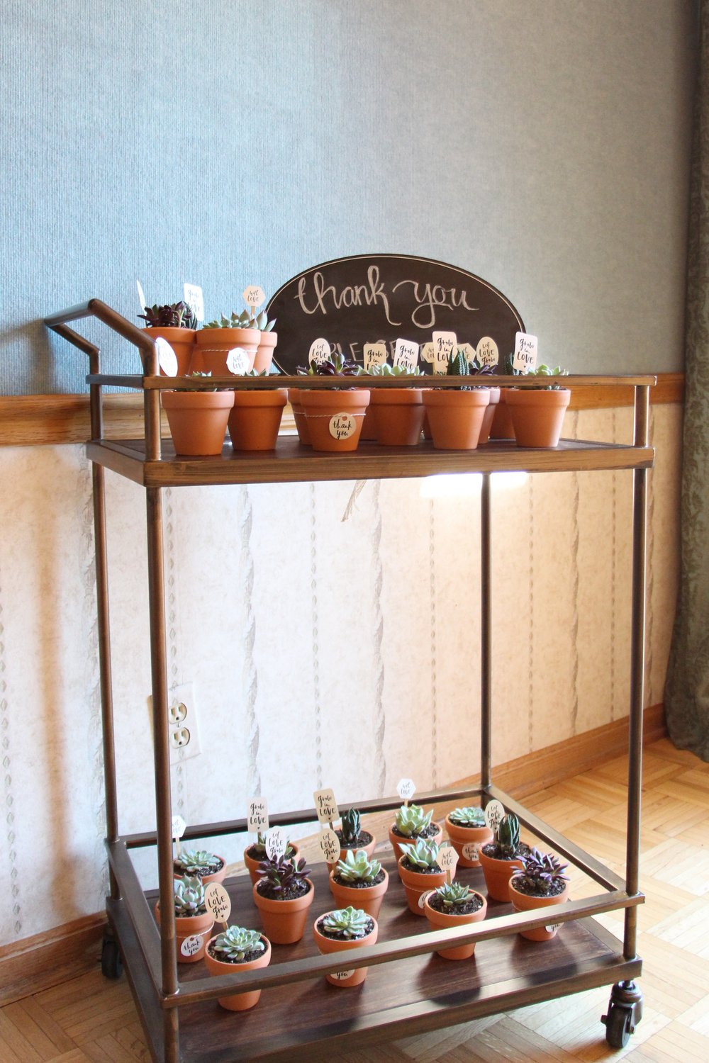brunch and bubbly bridal shower succulent favors on bar cart