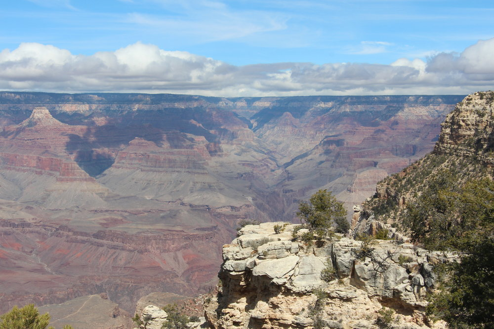 Grand Canyon by Mindy Larsen