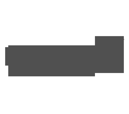 LAN.png