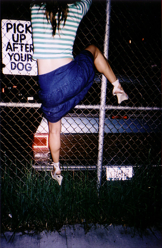A.dog.jpg