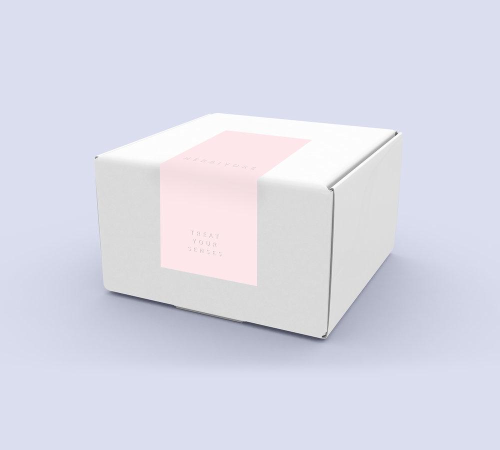 ALL BOX EXTERIORS.jpg