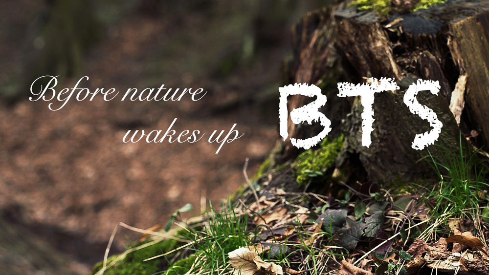 BTS banner for Before nature wakes up video
