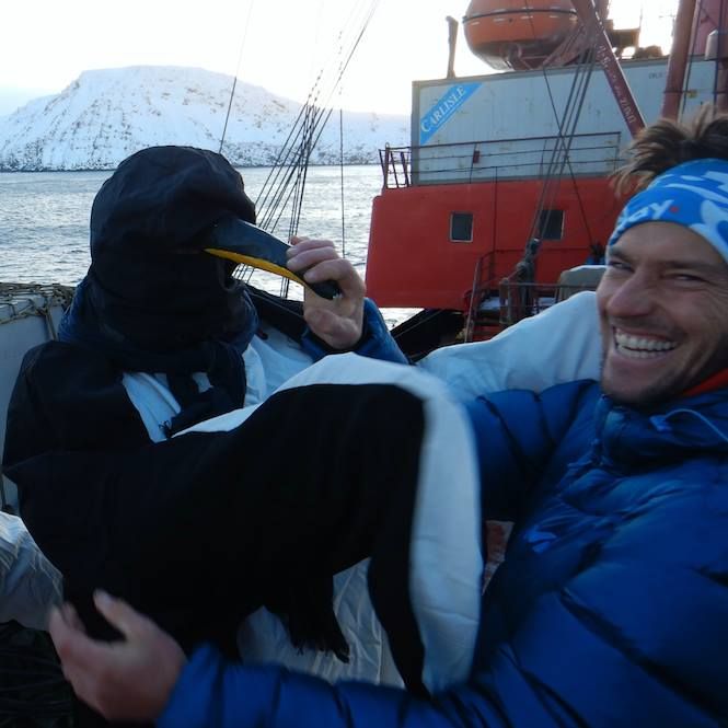 Looks like there are penguins in the Arctic after all... with Bertrand Delapierre... To be researched further...