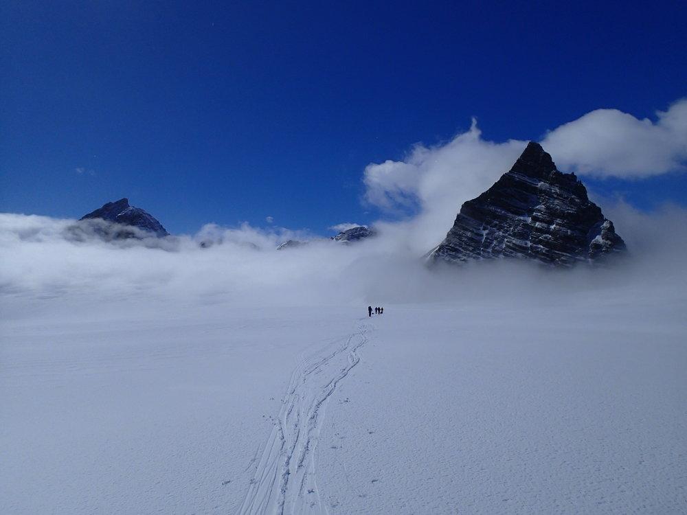 Antarctica | South Georgia - 2014