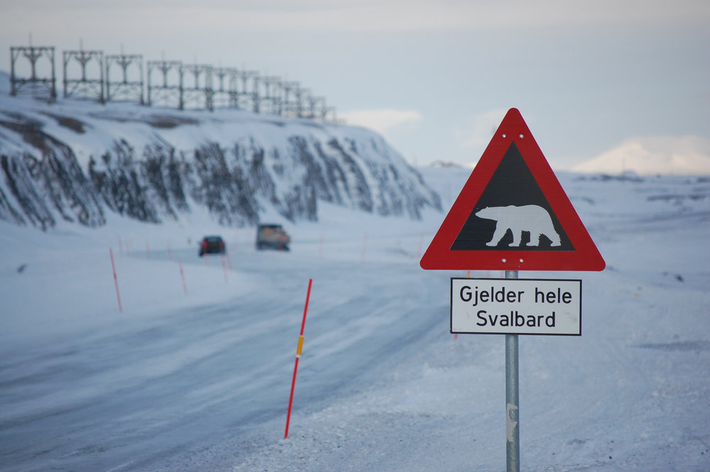 North Pole - 2011