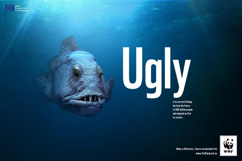 fish_layouts-1.jpg