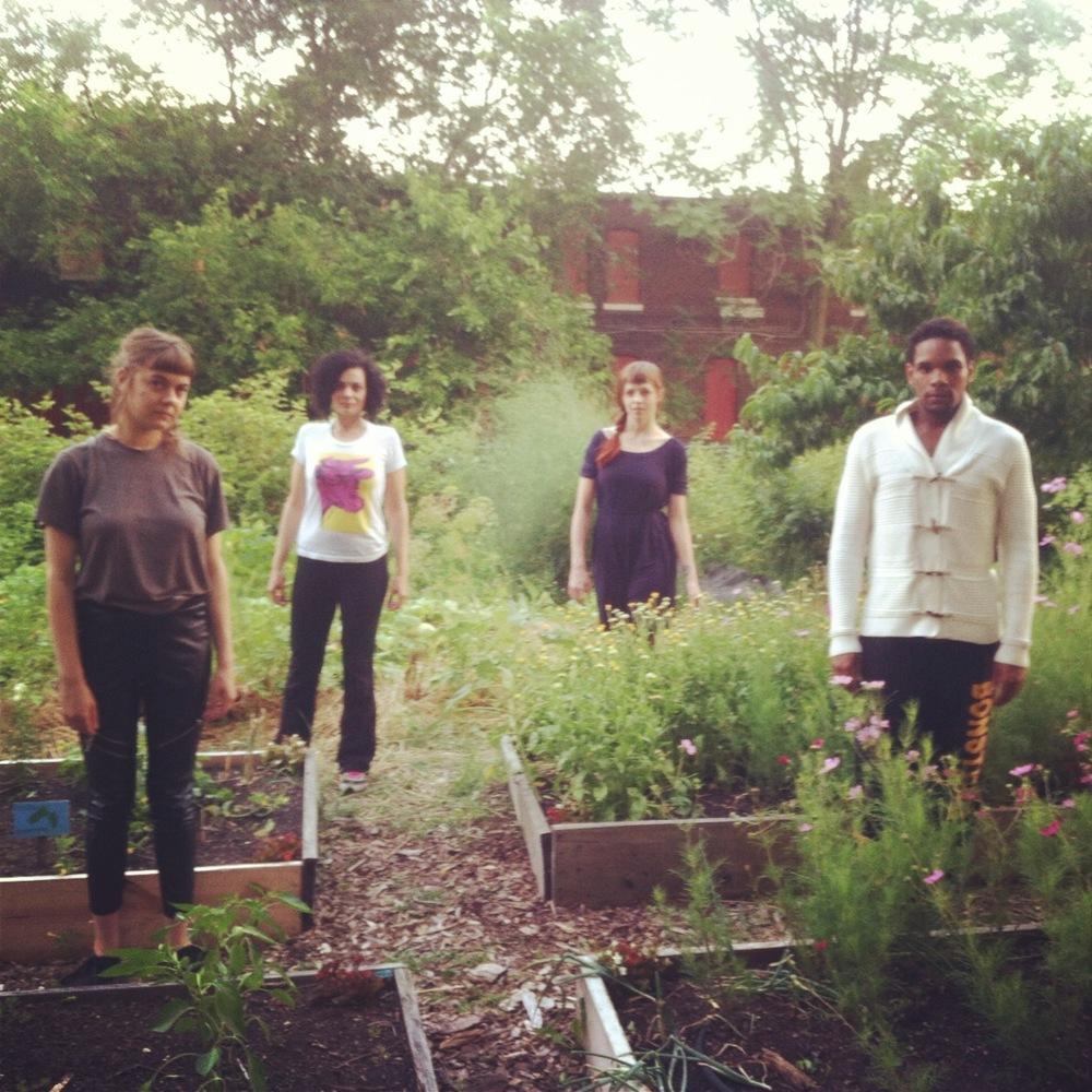 ahop garden photo.JPG