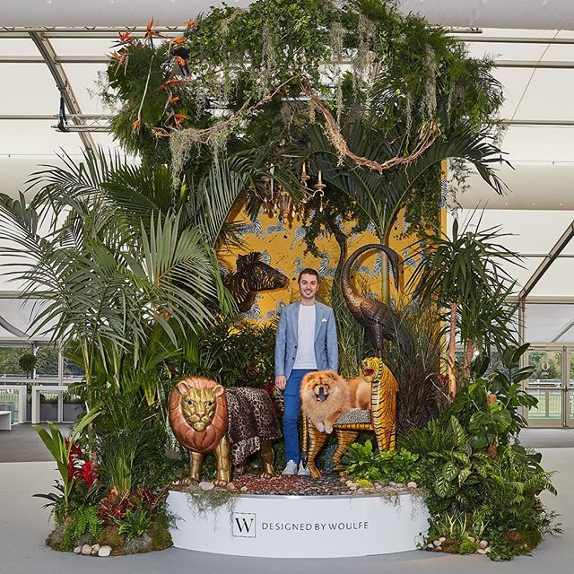 IT'S A JUNGLE OUT THERE  The much-lauded entranceway to Decorex International has been unveiled. We were asked to showcase our design journey and consider what has made us the interior designers we are today.  When I launched my interior design business I spent money on shit I did not need. I changed my services way too regularly and I was running around chasing the knowledge I hoped would make me a star!  These are the things I wish I had known when I was starting out : - The real world is severe and there are no shortcuts to success. - Getting yourself out there is hard but persevering pays off. - It is essential to be lean, agile and focused. - Never assume you know everything and do not be afraid to ask questions. - The industry is changing so transparency and collaboration should be encouraged. - It is cool to outsource and bring in different skills. - The key to scaling up is loving what you do and having fun doing it.  Learning how to navigate the jungle will define you as a designer.  LION: Representing pride, strength and courage. TIGER: Displaying energy, confidence and indulgence. ZEBRA: Symbolising a wild, bold and dynamic attitude. CRANE: Reflecting grace, partnership and longevity.  @decorex_international #decorex #decorex2018 #itsajungleouthere