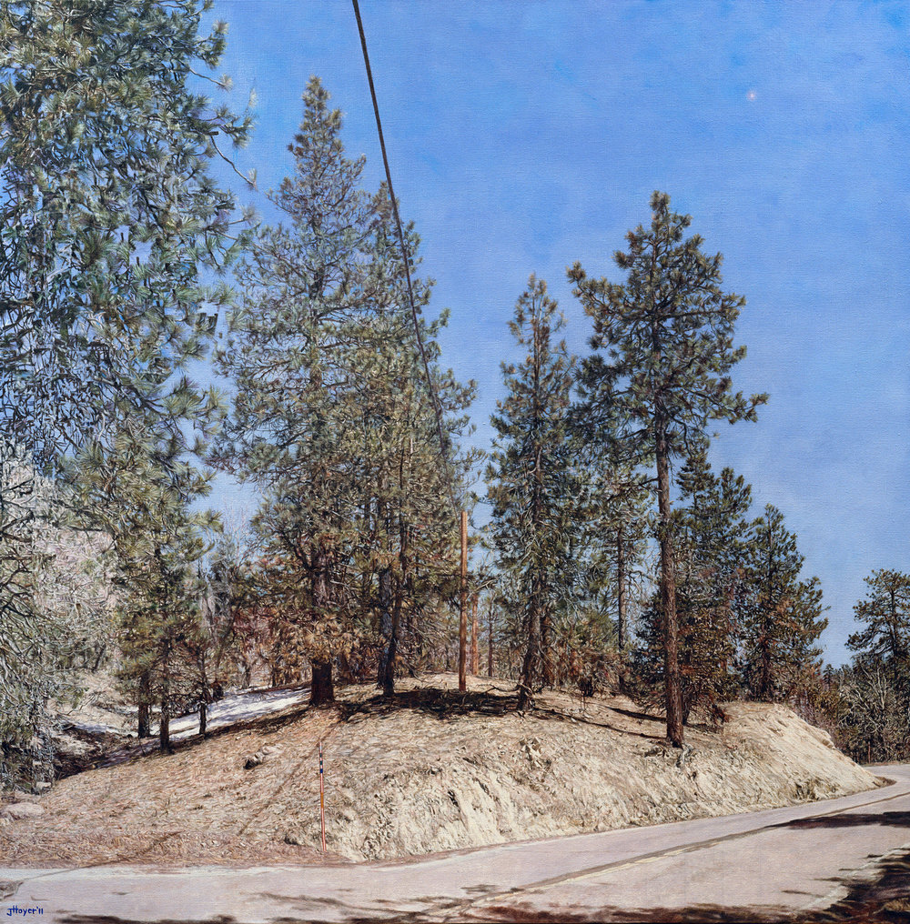 Big Bear Land Slab , 2011 Oil on linen 48 x 47 inches