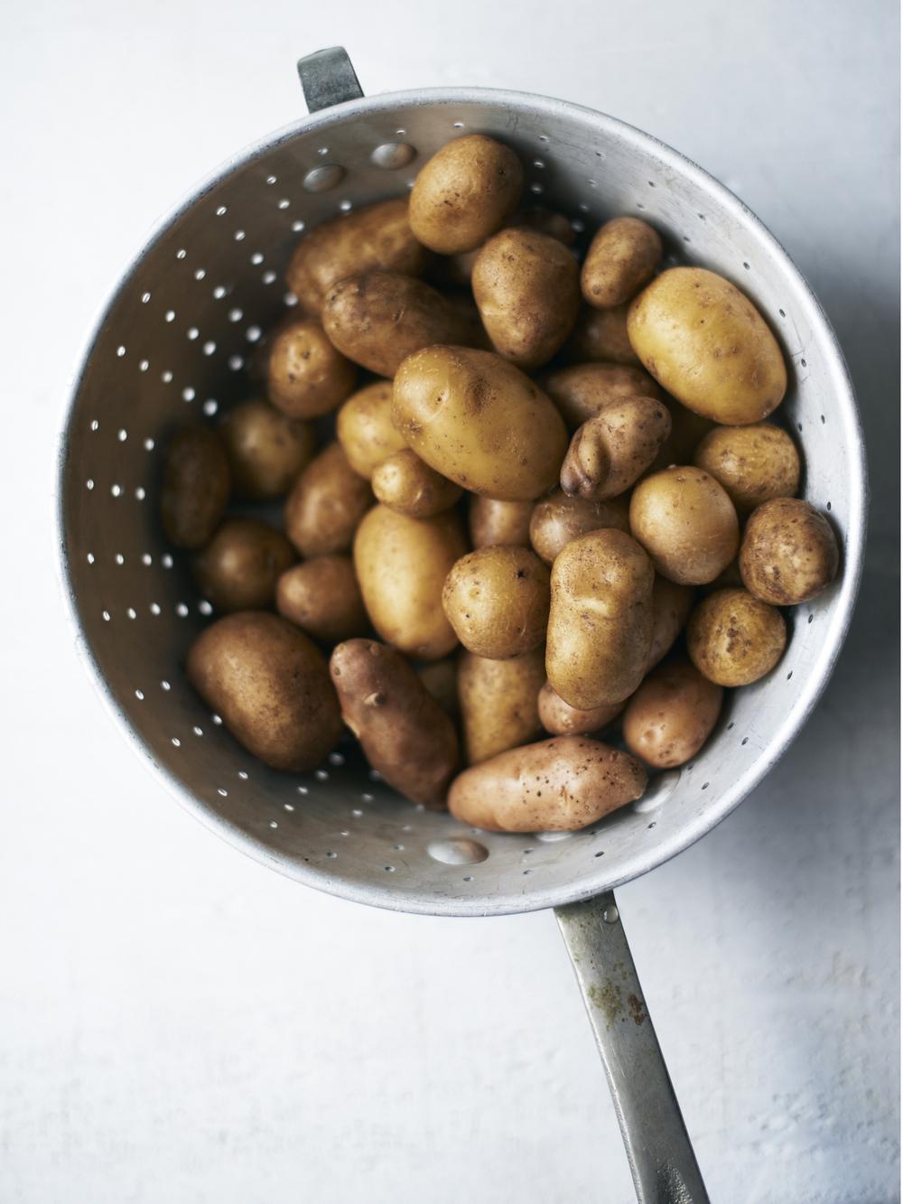 Potato_Test 2947.jpg