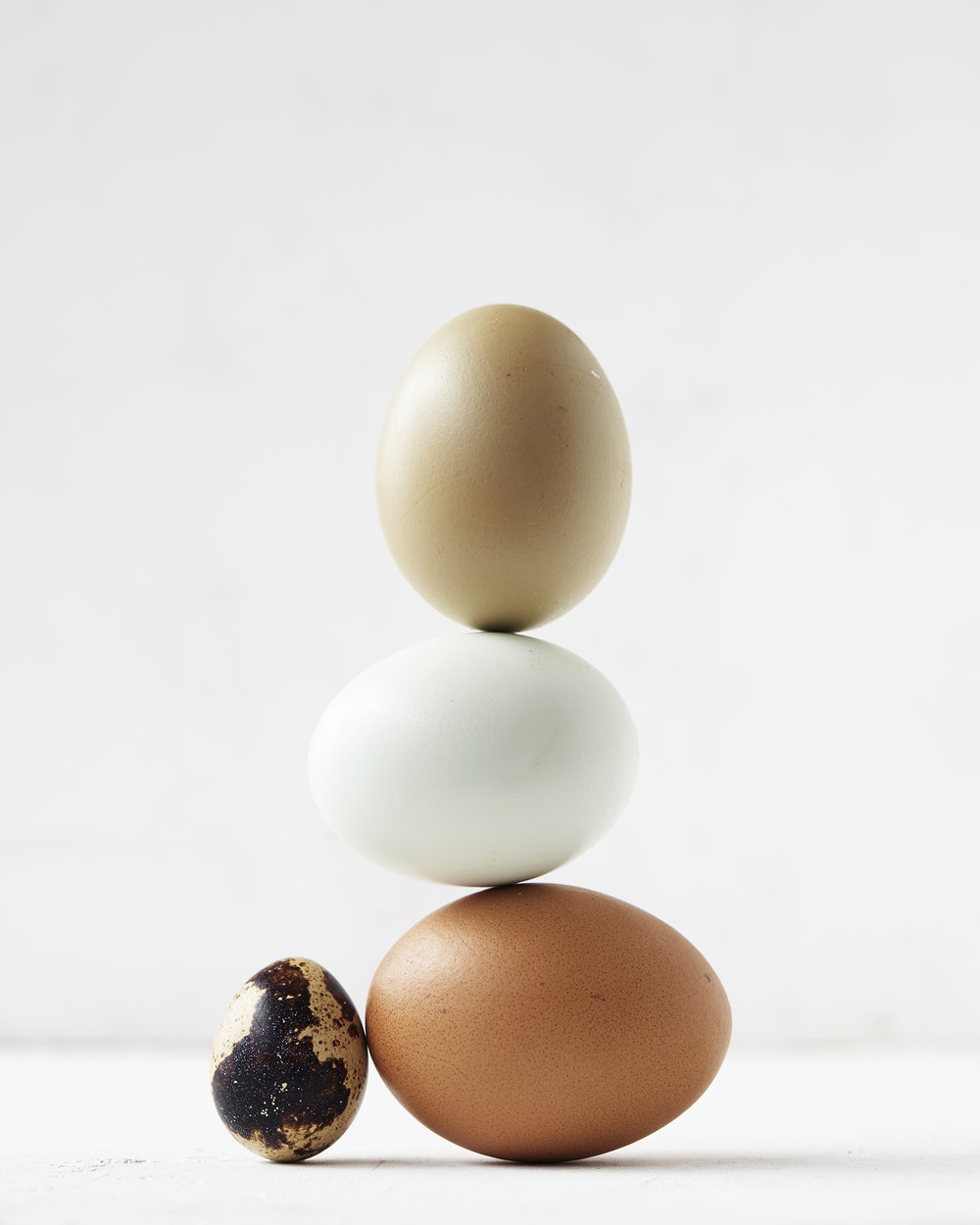 EggShop_EggStillLife8473.jpg