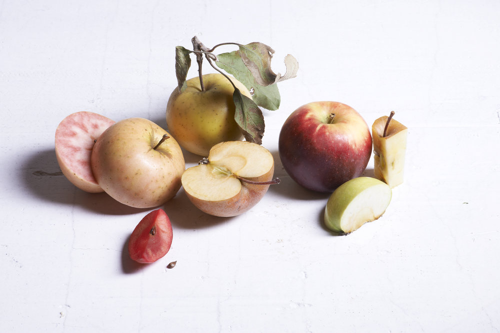 Apples 1478 1_FINAL.jpg