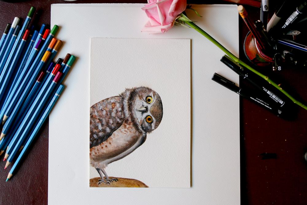 Original Owl painting.