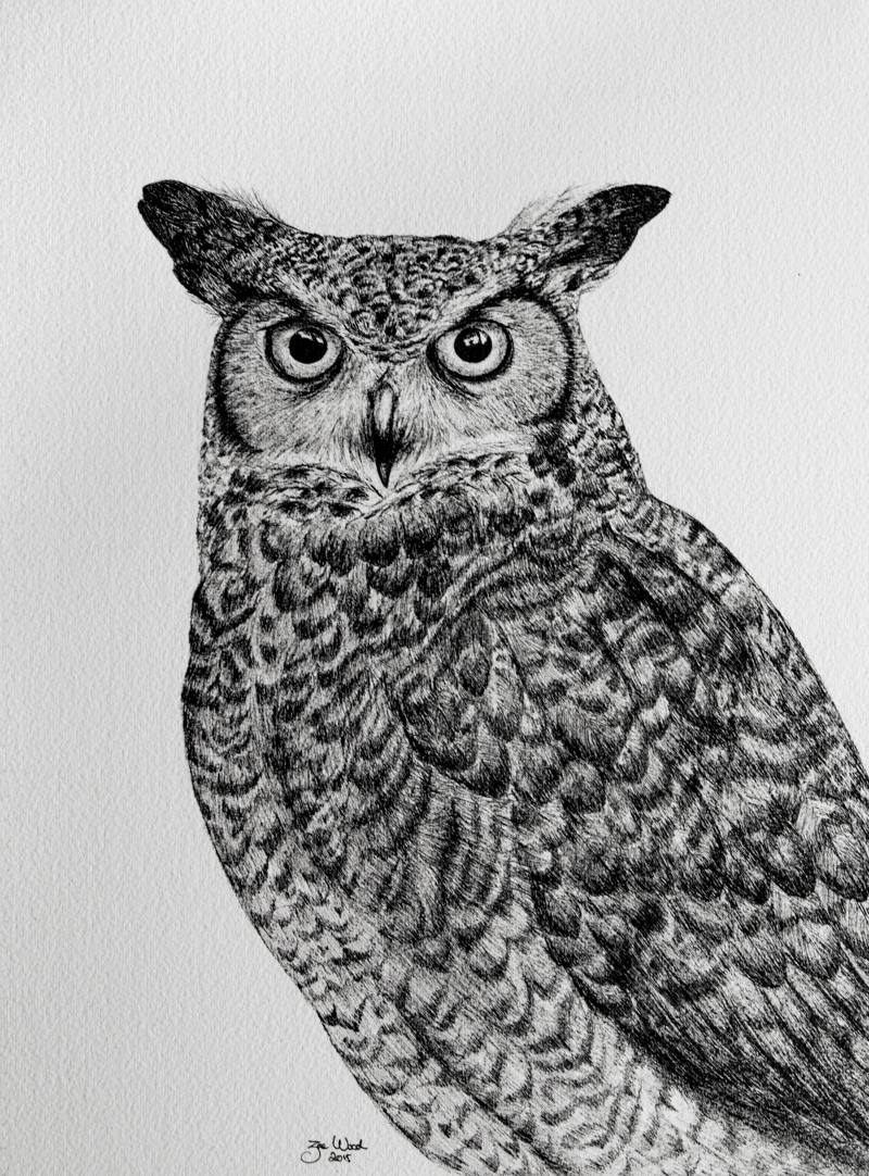 Commissioned Horned Owl for Greg