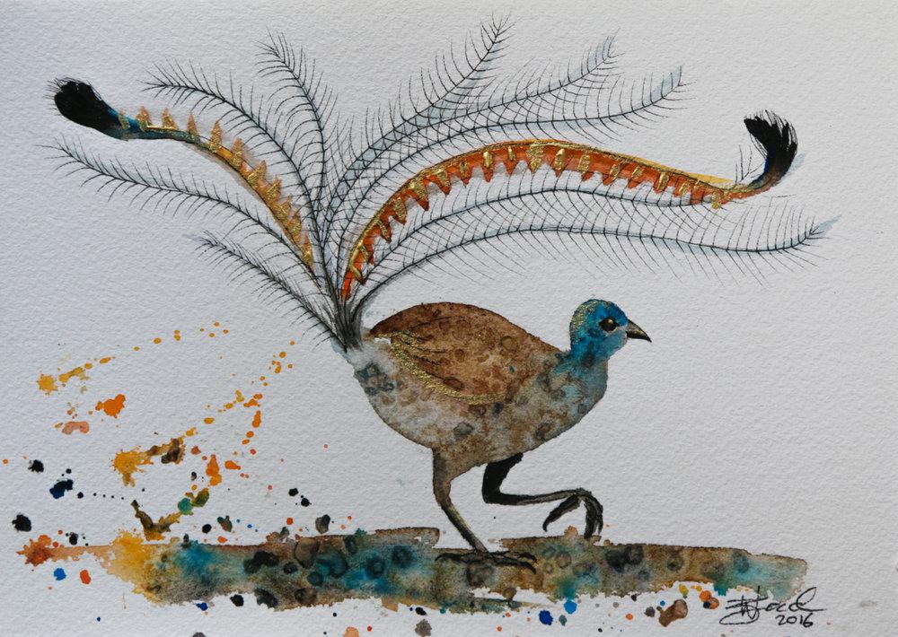 Lyrebird.jpg