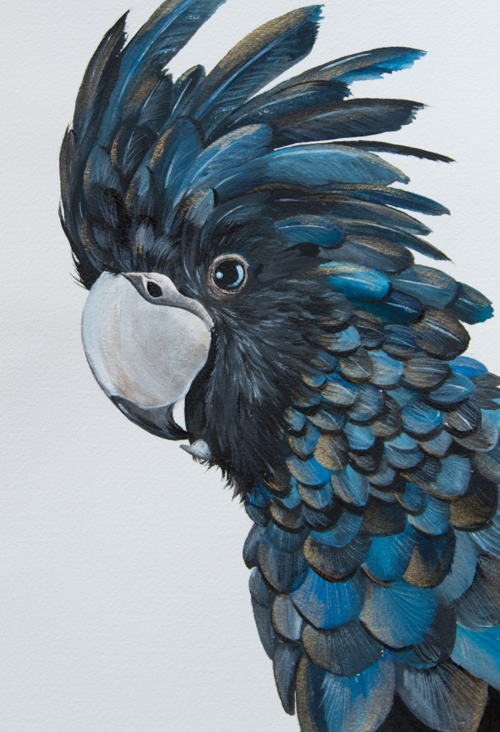 Day 8 Black Cockatoo - Zoe Wood - 2017 (1 of 1).jpg