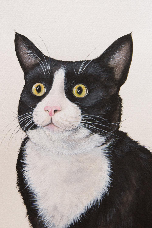 Boris's awkward portrait
