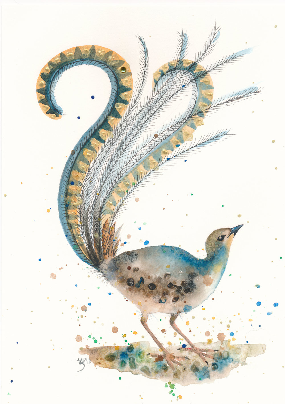 Lyrebird Watercolour with Gold Acrylic - Zoe Wood 2017