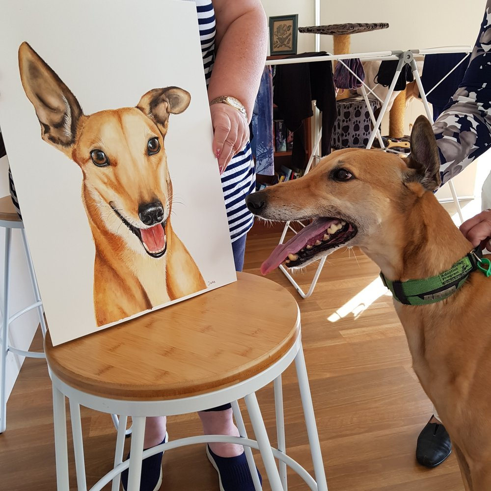 Greyhound Pet Portrait - Jake - Zoe Wood 2018