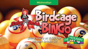 birdcage 2.jpg