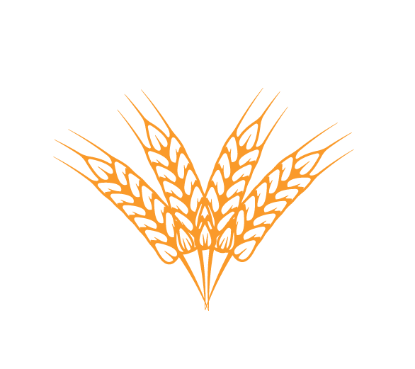Food Allergy Partners
