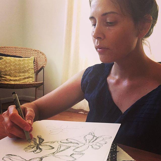 Drawing a Jade plant #sketching