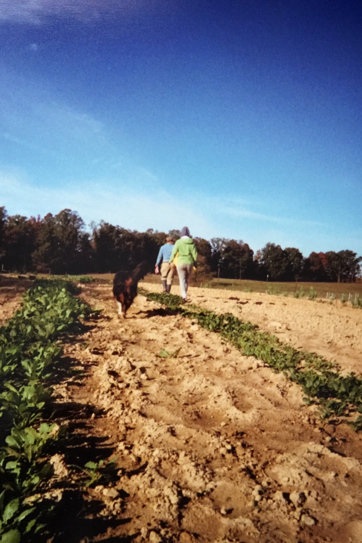 #farmlife