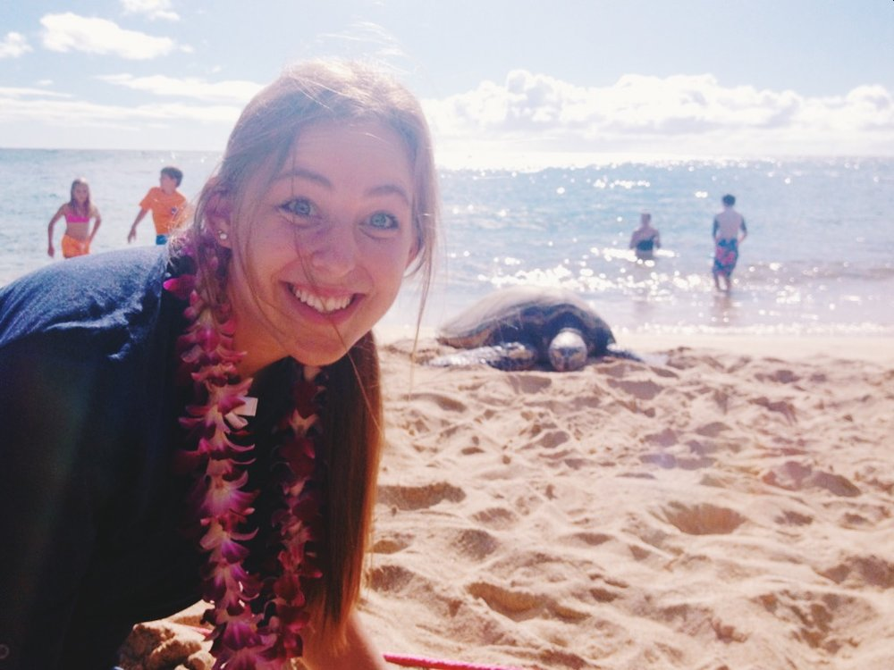 turtle beach.JPG
