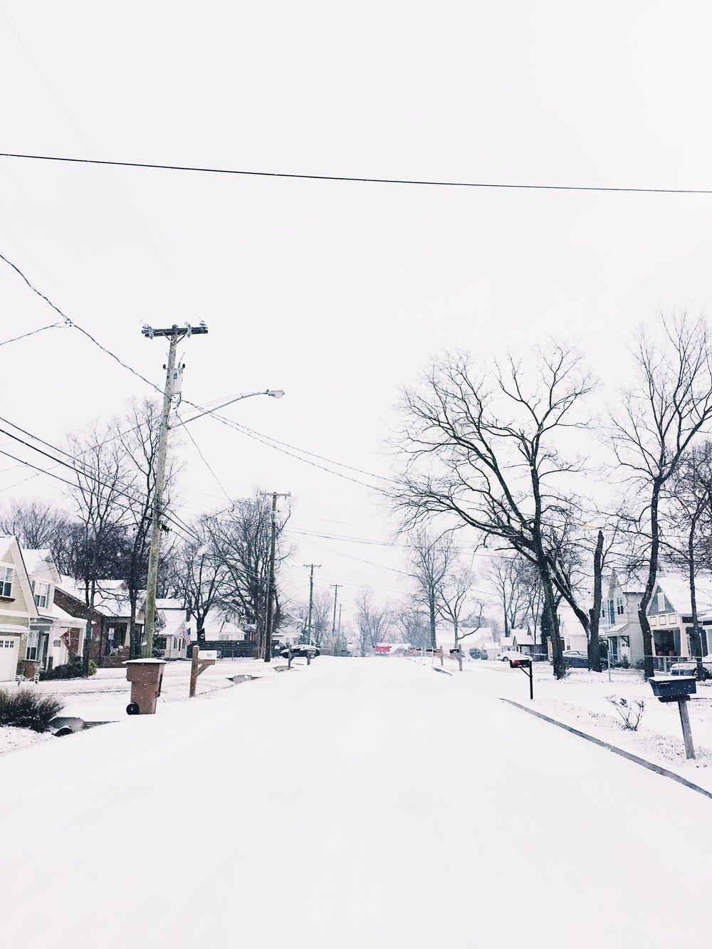 saw Nashville snow...