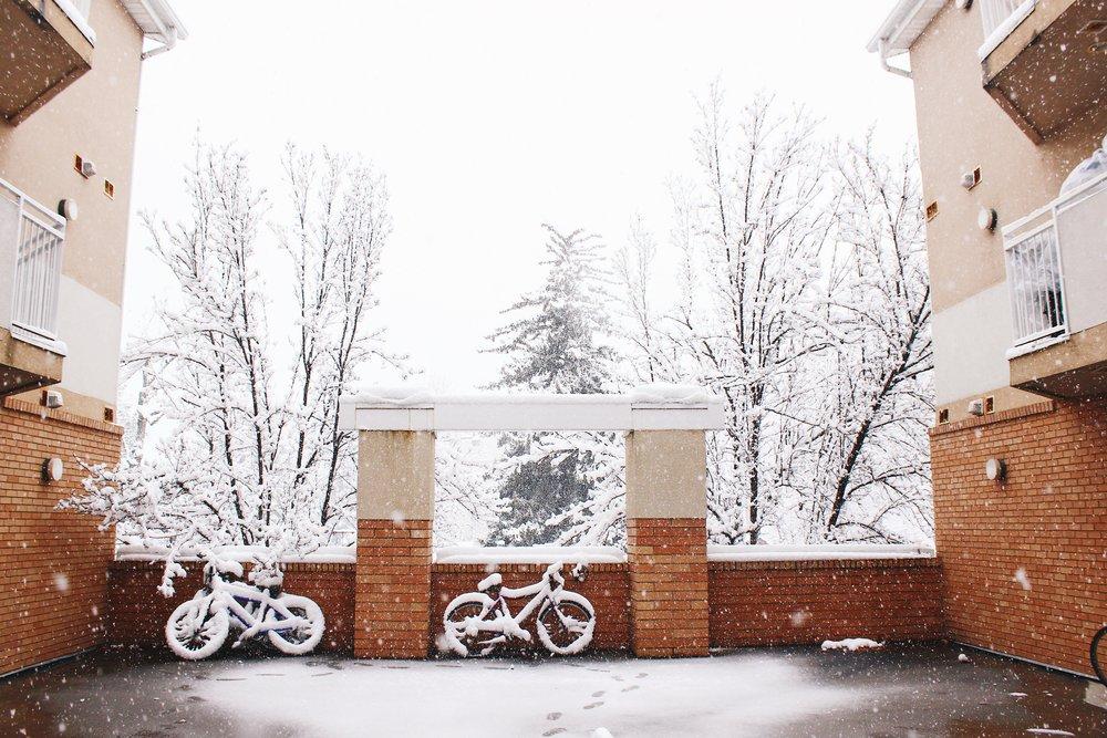 Utah Snow Day