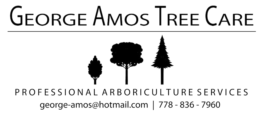 george_amos_tree_care_logo