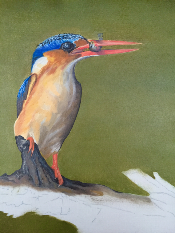 The blocking in stage on the Kingfisher is complete, next I will go over all the feather details and work on the dark colors and hi-lites