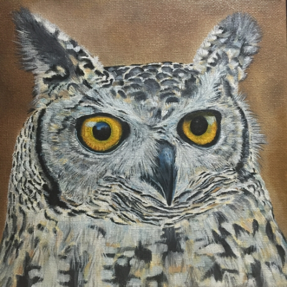 Spotted Eagle Owl, complete, oil on canvas, 20x20cm