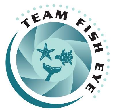 """Old """"Team Fish Eye"""" logo"""